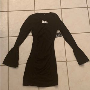 NWT Express Fitted Sweater Dress